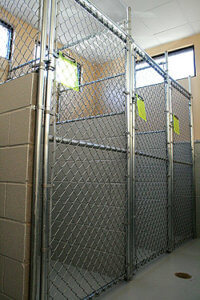 boarding and kennel services